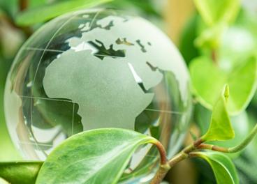 Ayudas directas para mejorar la sostenibilidad de las pymes