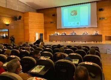 Poco aceite envasado y a bajo precio: los retos del AOVE en Jaén