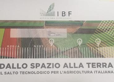 IBF Italia