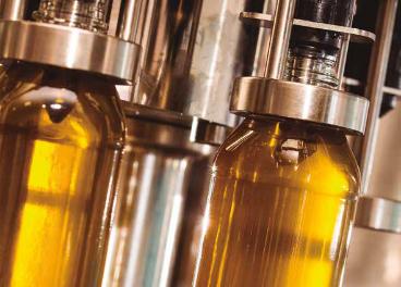 Linea de aceite de oliva envasado