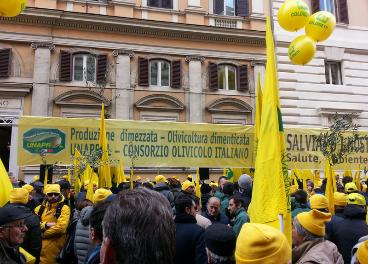 Manifestación de olivicultores italianos.