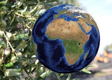La Dieta Planetaria cobra cada vez más adeptos en todo el mundo.
