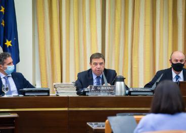 Luis Planas durante su comparecencia en el Congreso.