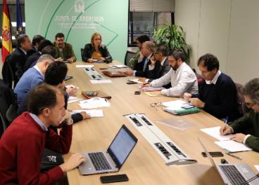 Reunión entre representantes del sector oleícola andaluz y de la Junta.