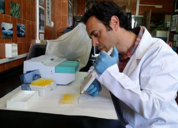 José García, investigador de la Universidad de Málaga.