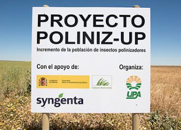 Imagen de campo del proyecto