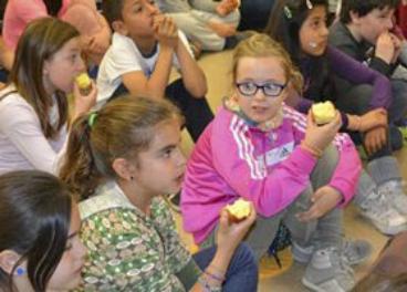 Andalucía incluirá el aceite de oliva en los comedores escolares ...