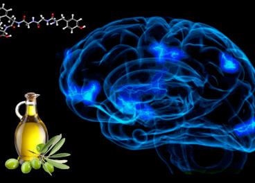 La actividad encefalinasa se relaciona con el nivel de ciertos ácidos grasos.