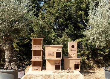 Olivos y nidos en la planta de Sevilla de Verallia.